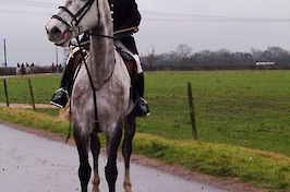 Field Farm Cross Country Quorn Hunt 2017 16